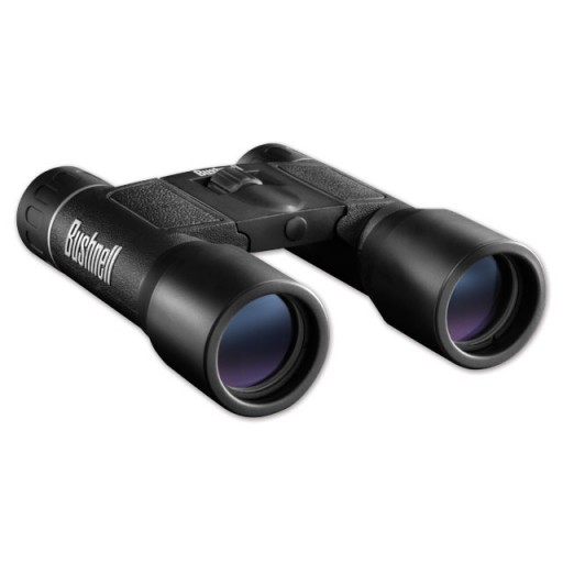 BUSHNELL Powerview 10x32 Tetto ***Fineserie #131032