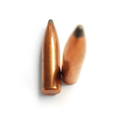 "BIG-BULLET .243"" 6mm 100gr SP (100pz)"